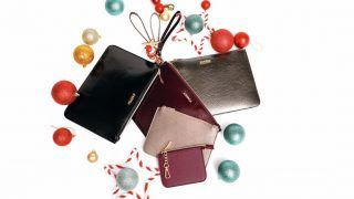 Neodoljive Carpisa torbice za sve blagdanske prigode   partye 99a98389ad